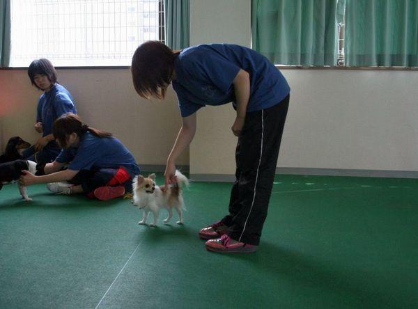 2010.6.28一発芸 184.jpg