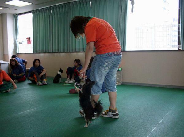 2010.6.28一発芸 216.jpg