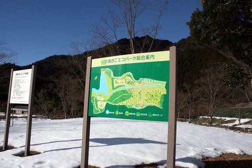 2011 1.30 107.jpg